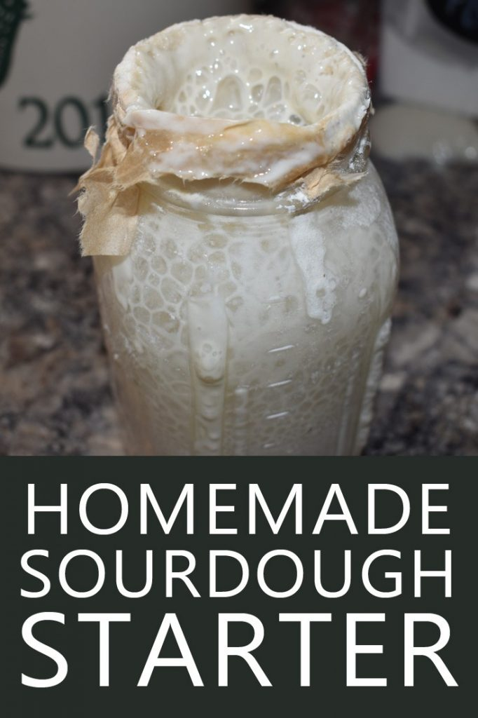 sourdough starter pin