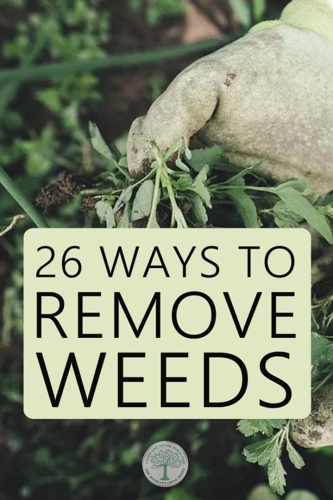 weed removal pin