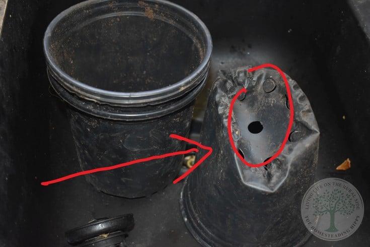 damanged plastic pot