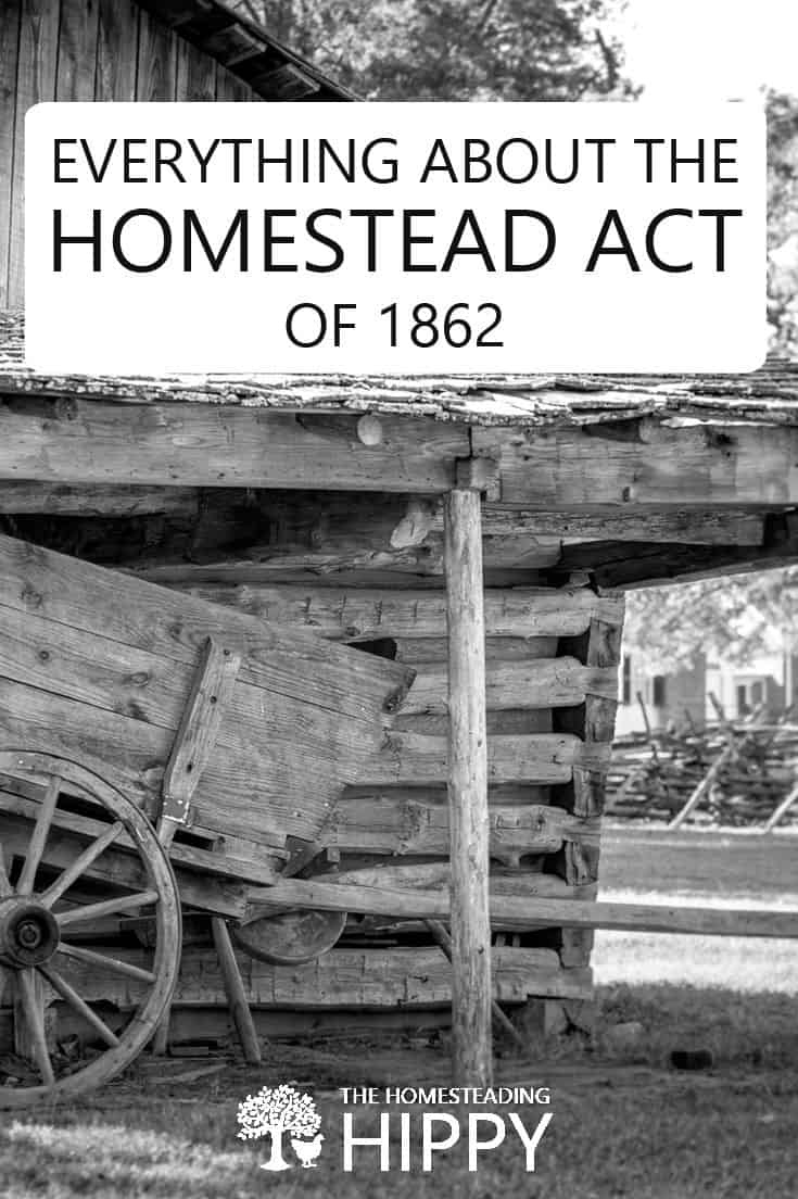 homestead act pin