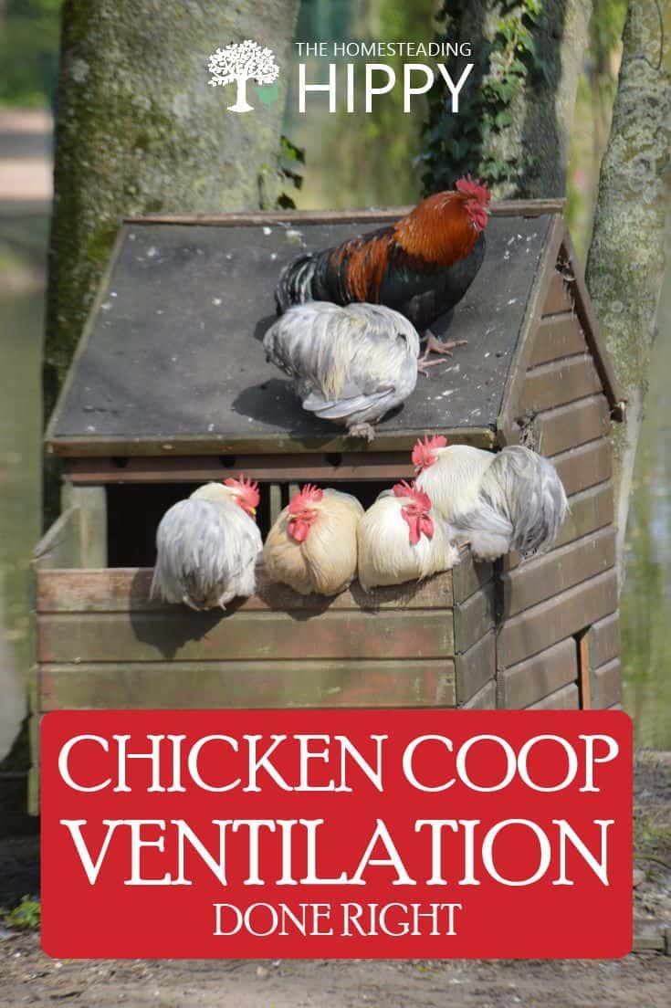 chicken coop ventilation pin