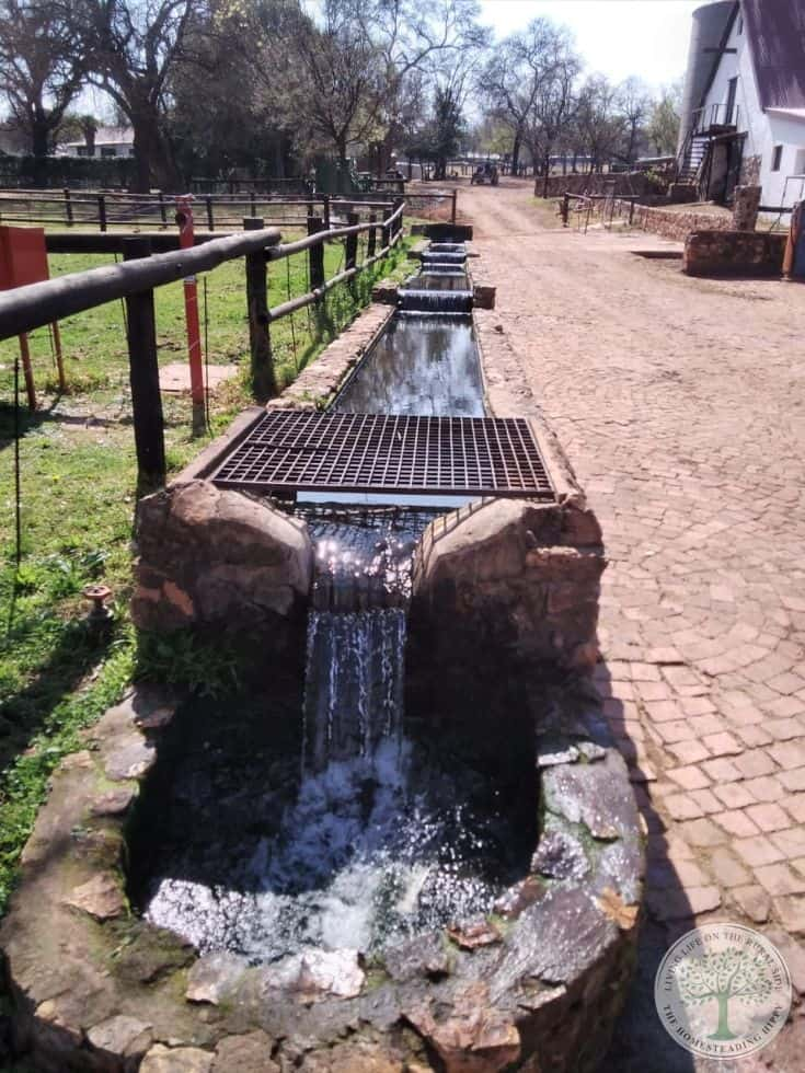 water troughs with purified water
