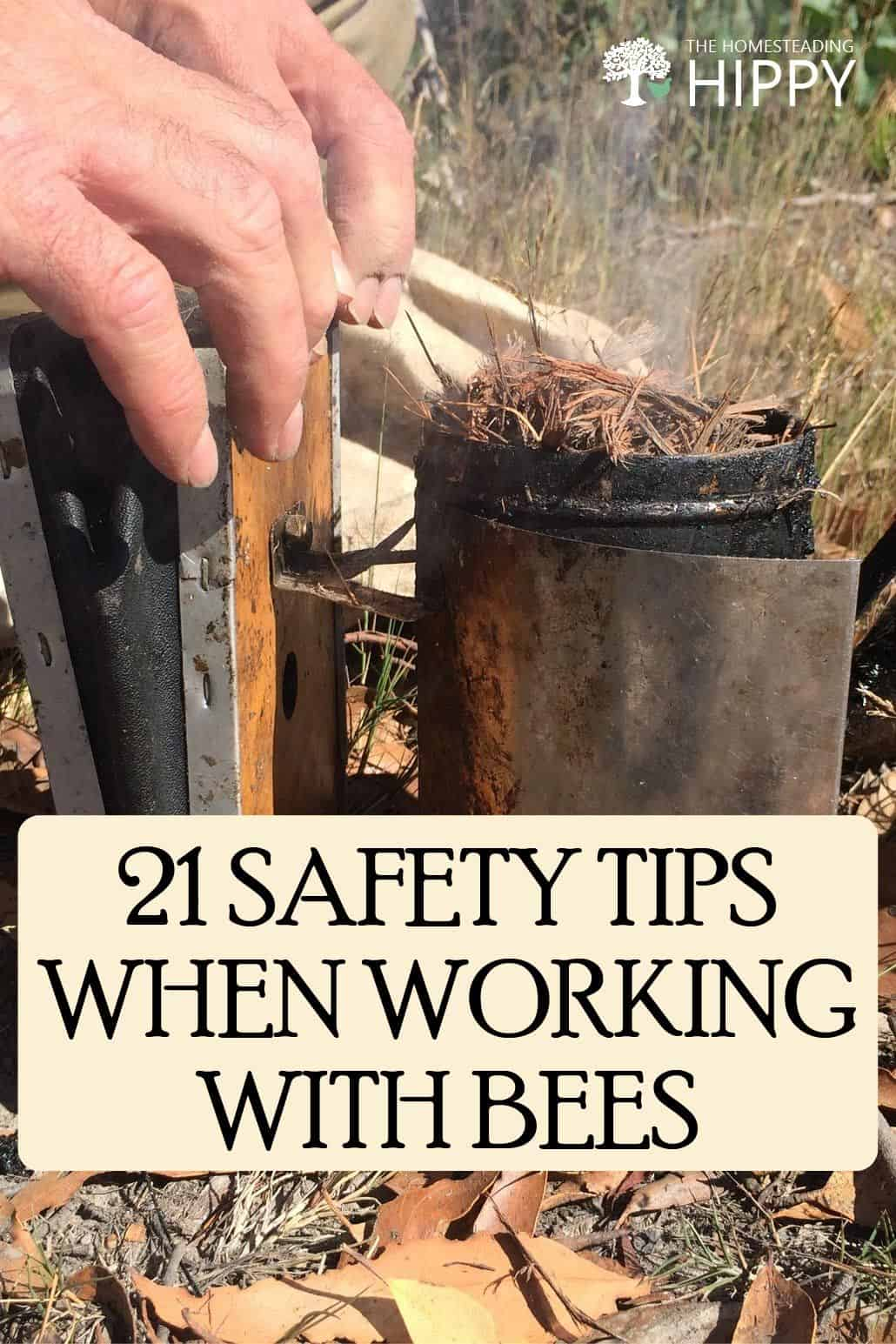 bees safety tips pin