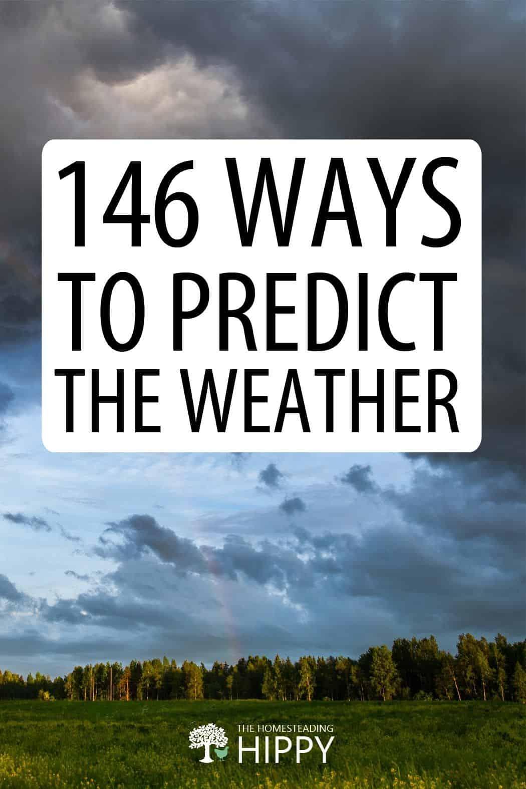 predicting weather pin