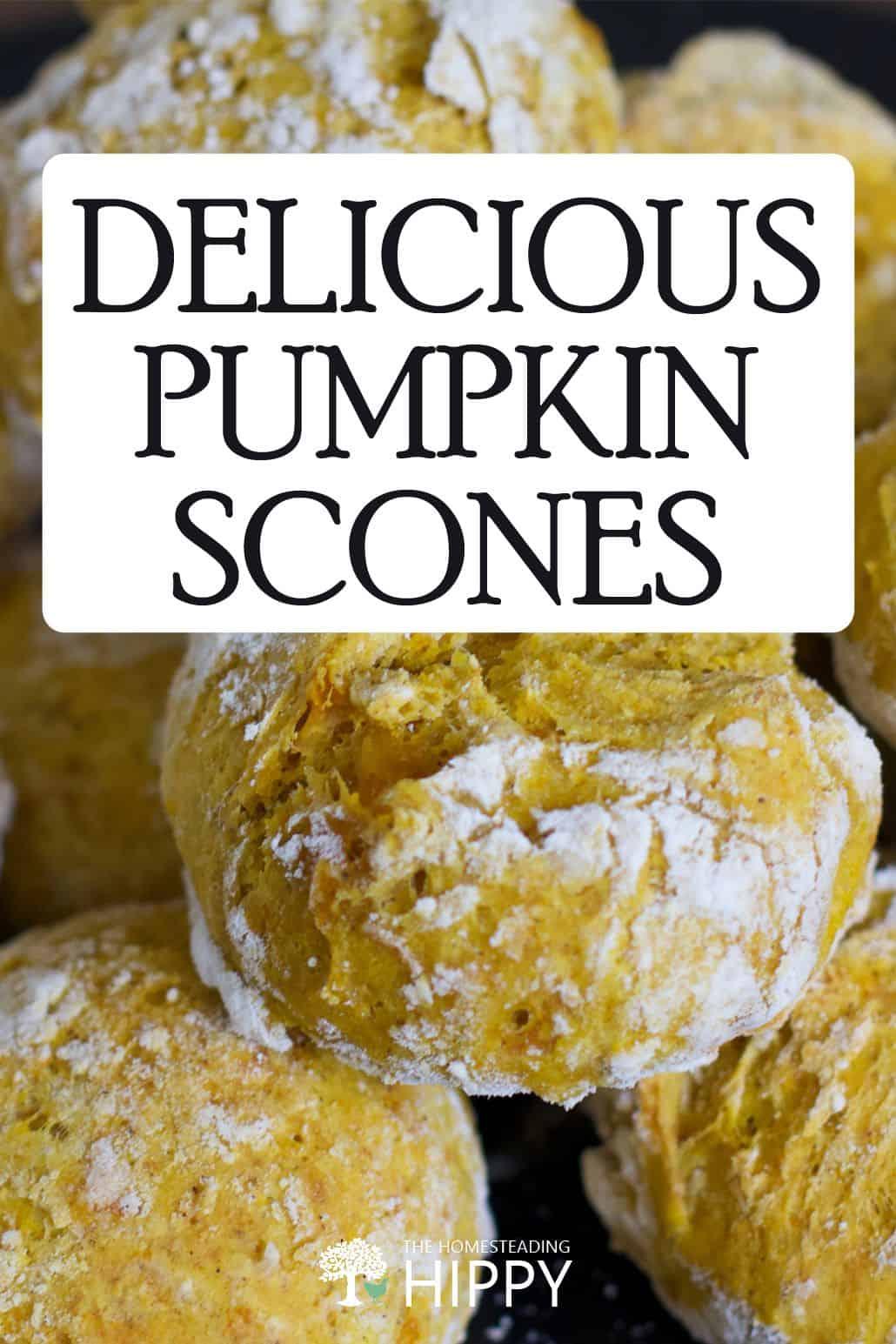 pumpkin scones pin