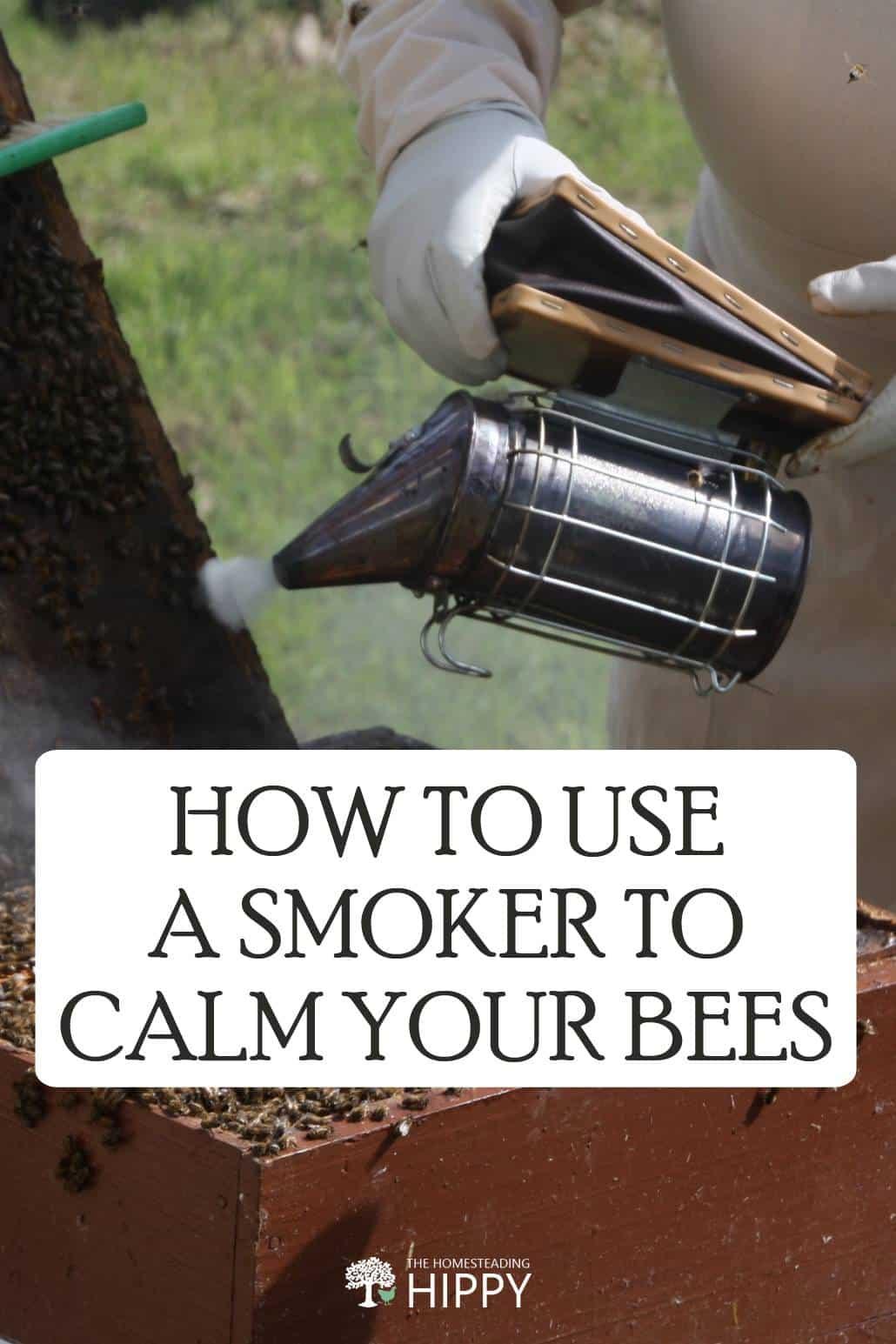 calming bees pin