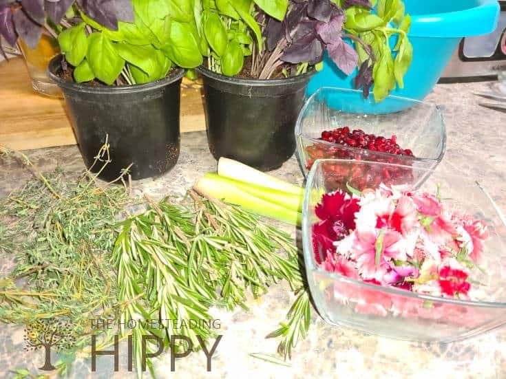 Basil, Lemongrass, Thyme, Rosemary, Pomegranate Seeds, and Edible Flowers