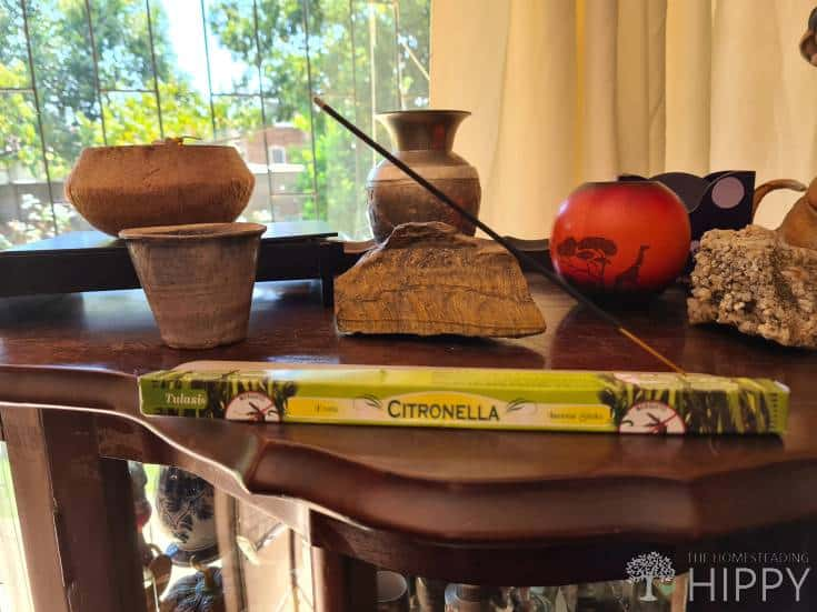 burning citronella incense stick