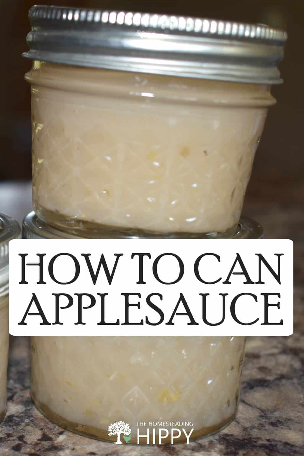 canned applesauce pin