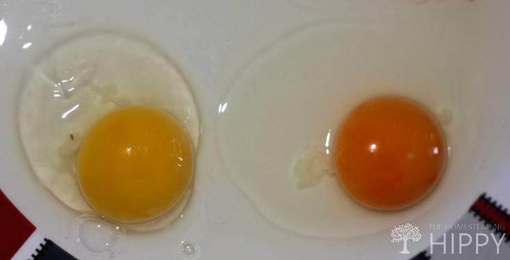 difference in vitalline membrane in egg yolks