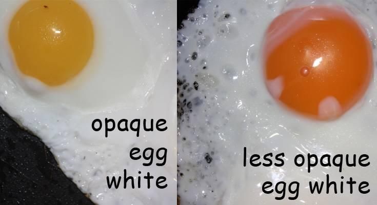 egg yolks opacity
