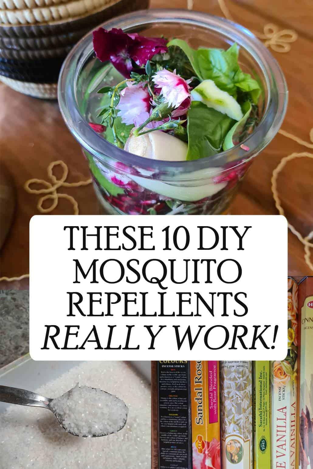 mosquito repellents pinterest