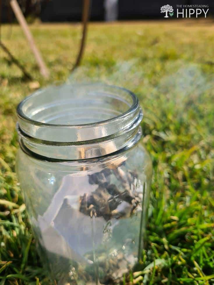 burning brown paper inside bee smoker