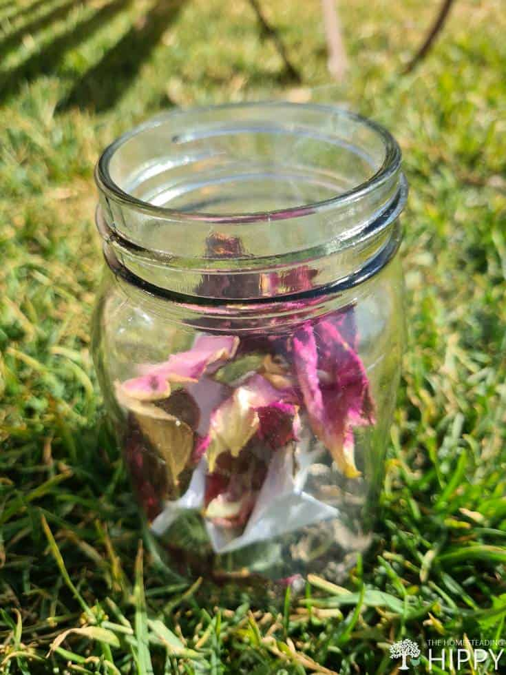 dry rose petals burning in bee smoker