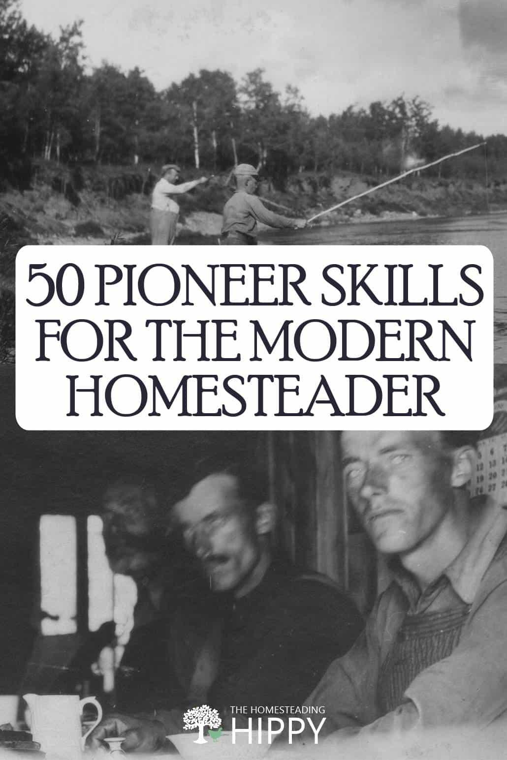 pioneer skills pin