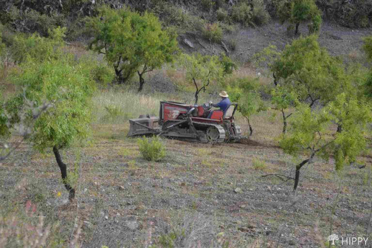 a bulldozer clearing land