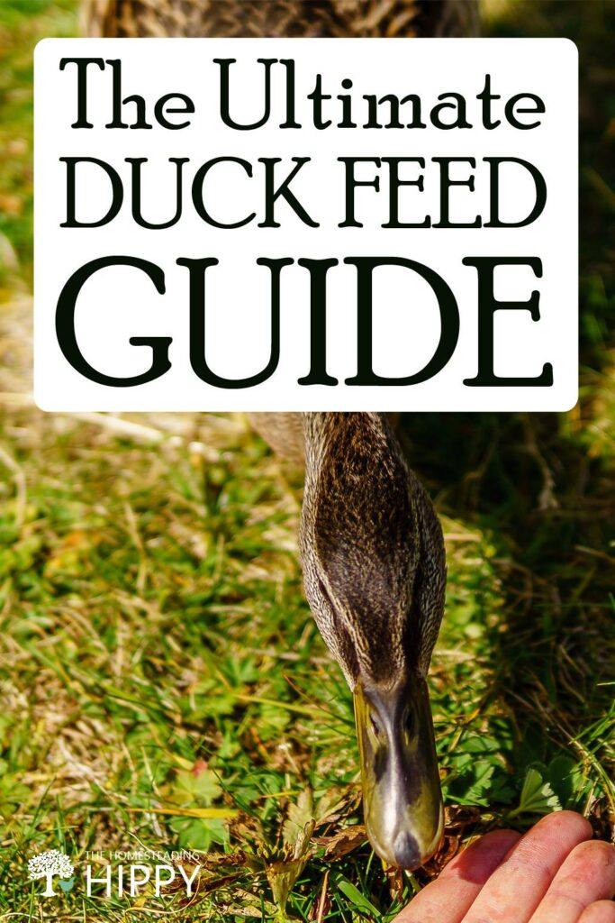 duck feed guide pin